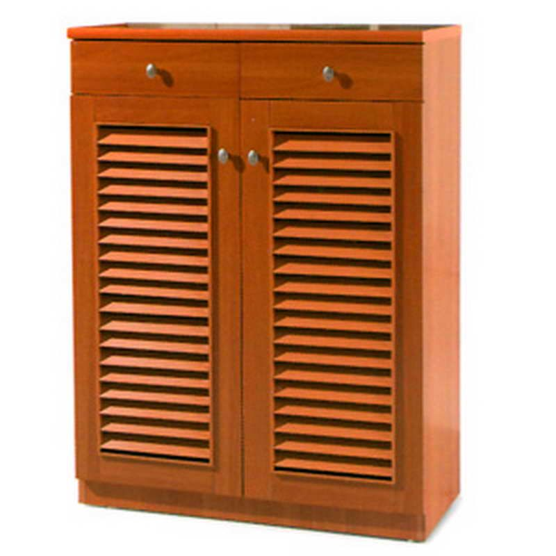 shoe cabinets with doors