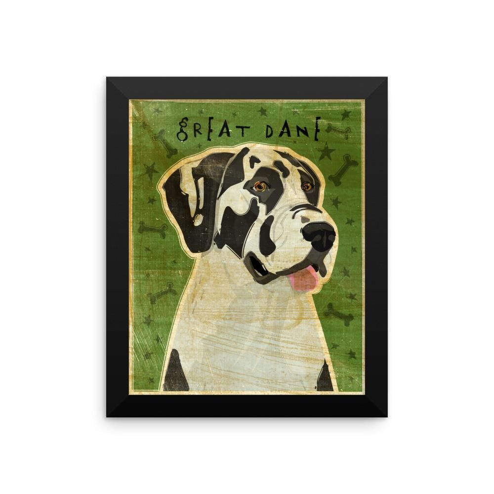 Harlequin Great Dane Framed Poster Uncropped Ears Harlequin