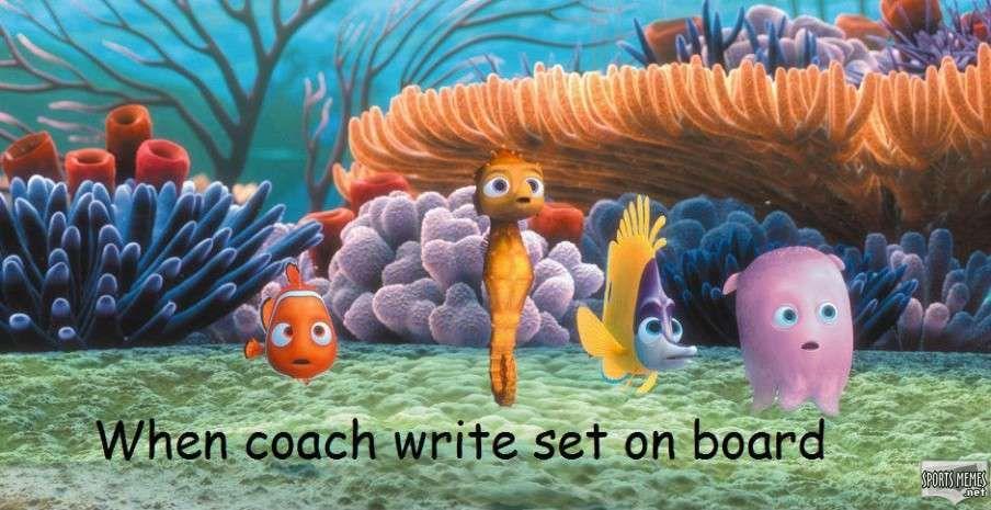 Finding Nemo Disney Walt Disney Movies Fish Animation: Finding Nemo Fish