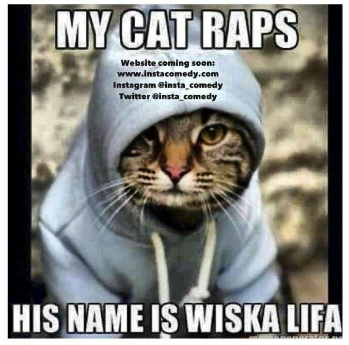 Cat Raps