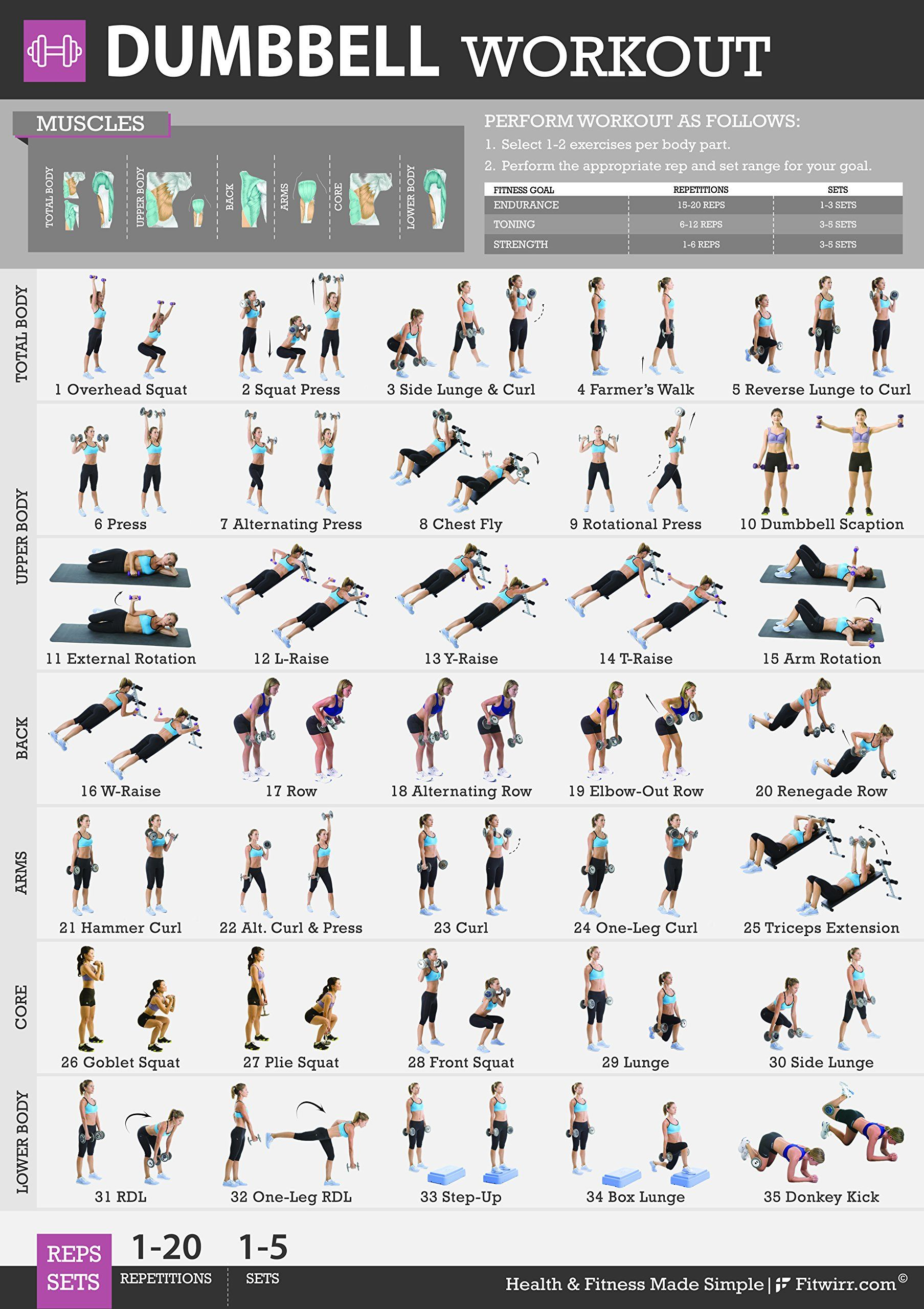 This Workout Poster Features 35 Dumbbell Exercises To Do At Home Lose Weight A Great Selection