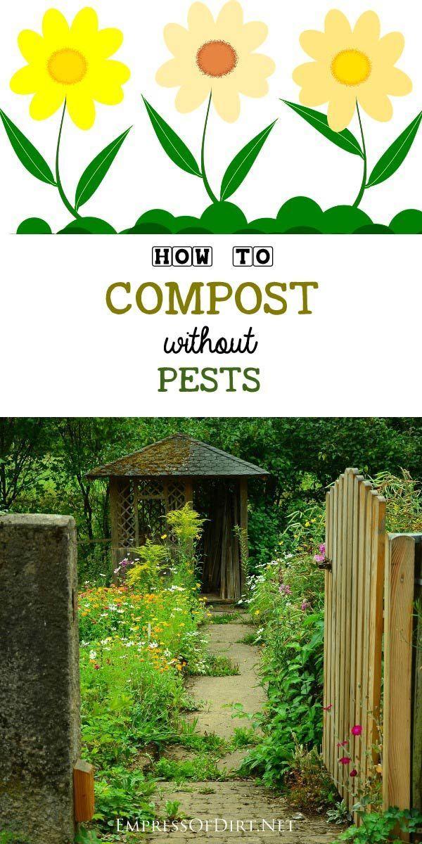 feac02aeb7897358fd6da5c4d4e84762 - How To Get Rid Of Mice In Compost Bin