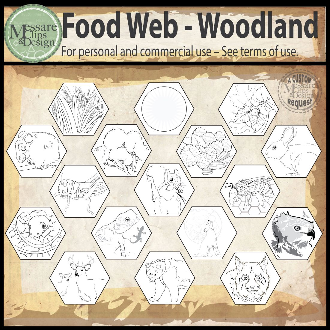 Woodland Animal Food Web Clip Art Messare Clips And