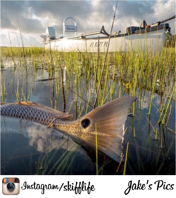 Redfish in the grass flats with the super skinny gheenoe for Tides for fishing louisiana