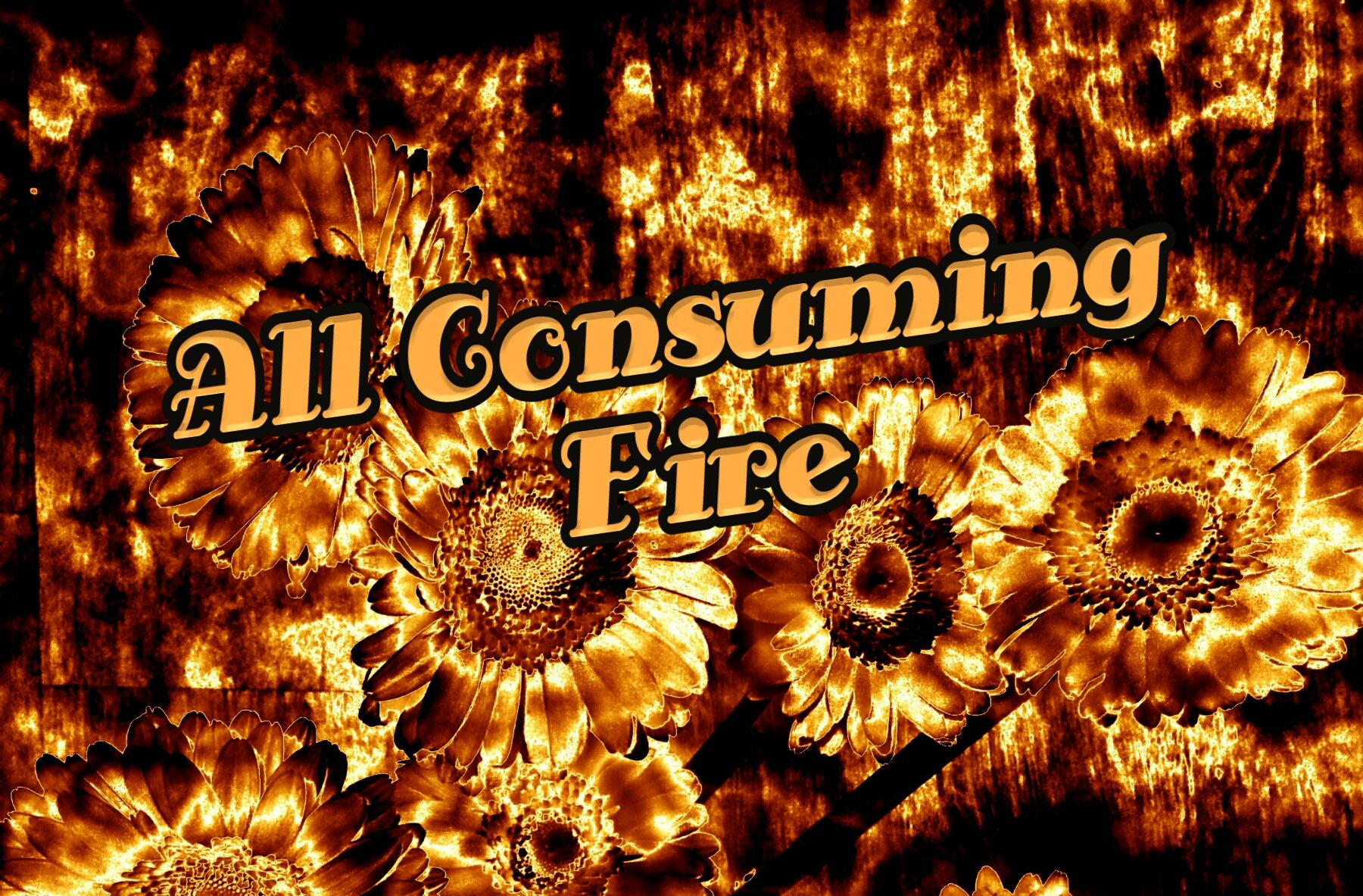 For our G'd isaconsuming fire - Hebrews 12:29 This week we study the Parashah Va'eira (וארא), Exodus 6:2-9:35, Isaiah 66:1-24, and Matthew 12;1-14. Va'eira, meaning And I appeared comes from the second verse of the Torah portion Exodus 6:3. The portion begins with the four expressions of Redemption. The Almighty G'd promises to remove His People from the bondage of slavery, rescue His People, redeem His People, and take them as His Bride. This my friends, is a rich narrati...