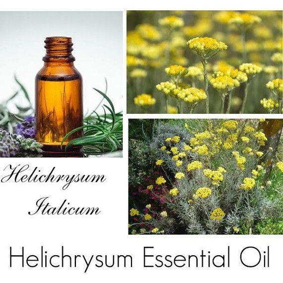 Helichrysum Essential Oil, Helichrysum Oil, Immortelle Oil, Immortelle Essential Oil, 100% Pure Authentic Helicrysum EC