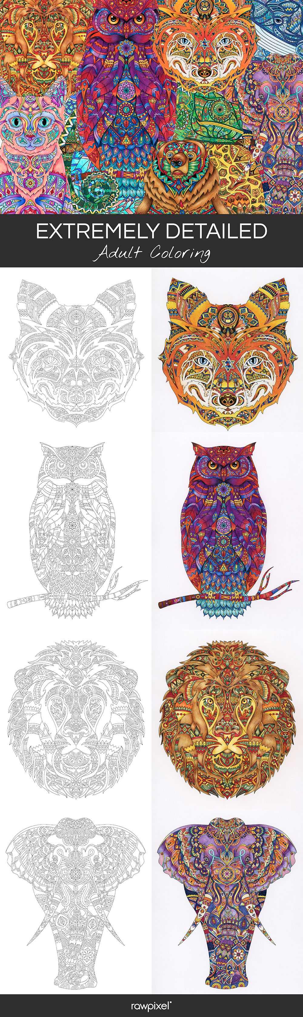 Free Download The Hardest Most Detailes Adult Coloring Page In