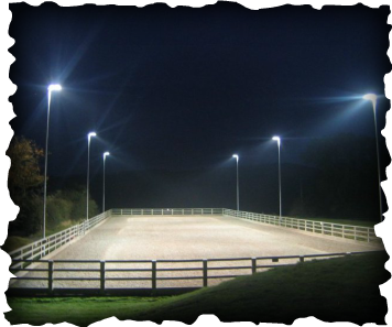 Equestrian Lighting Outdoor Dressage Arena Horse Training