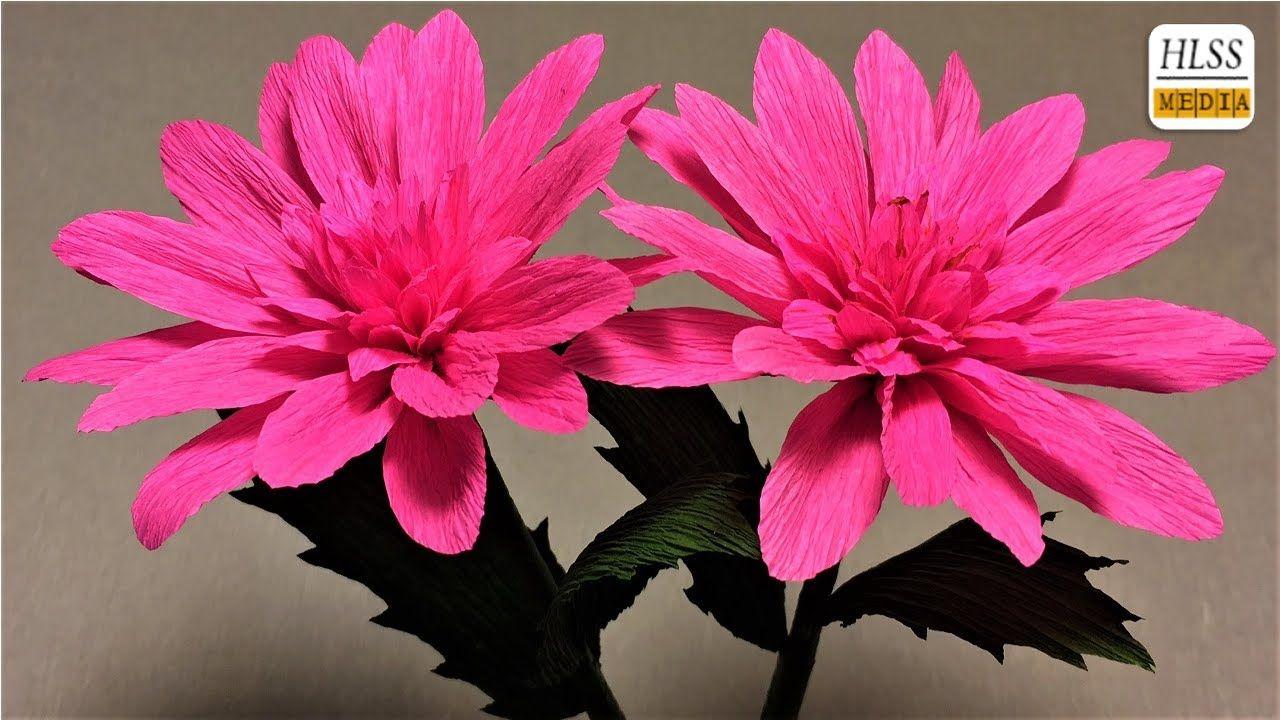 How to make dahlia paper flower diy dahlia crepe paper flower how to make dahlia paper flower diy dahlia crepe paper flower making tutorials paper crafts youtube mightylinksfo