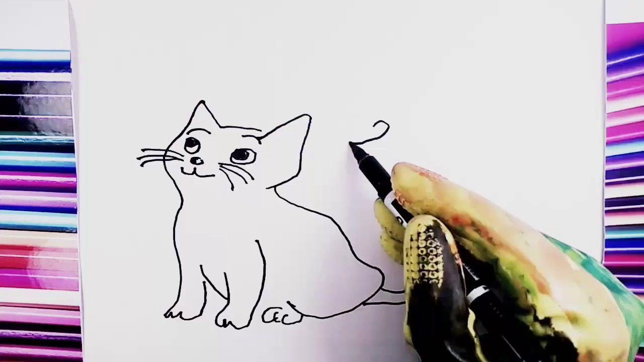 Páginas dibujos de caimanes y Gato para colorear / Pintura para ...
