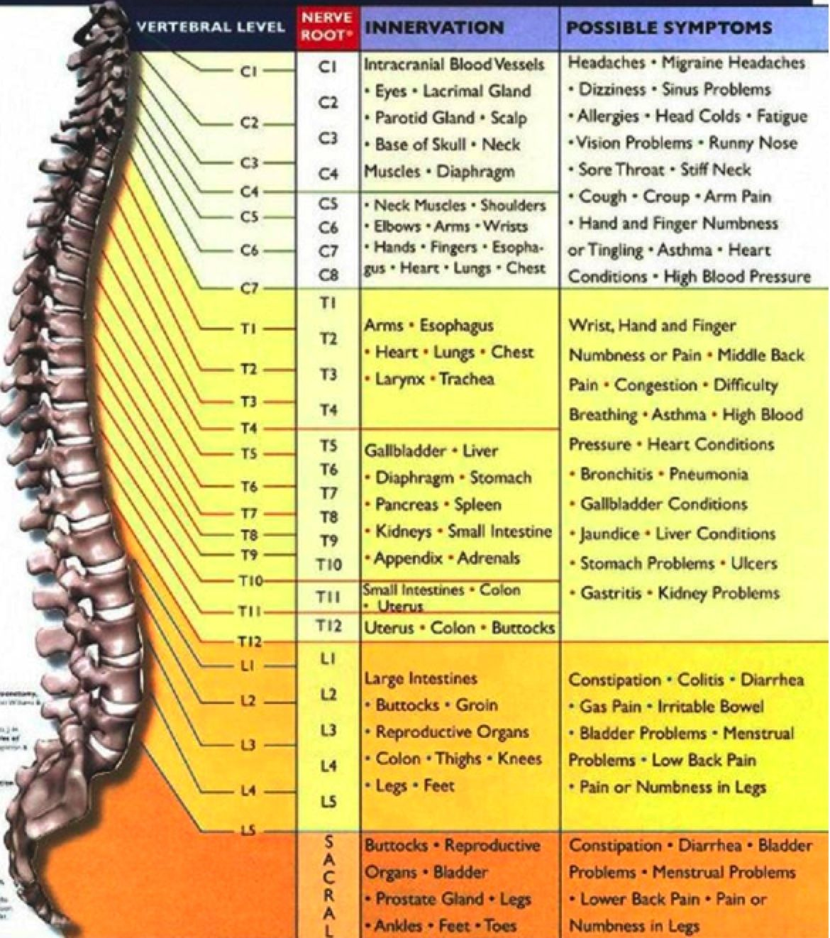 10 Things Most People Don T Know About Chiropractic