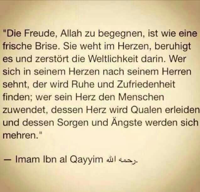 Die Freude Hadith Zitate Weisheiten Allah