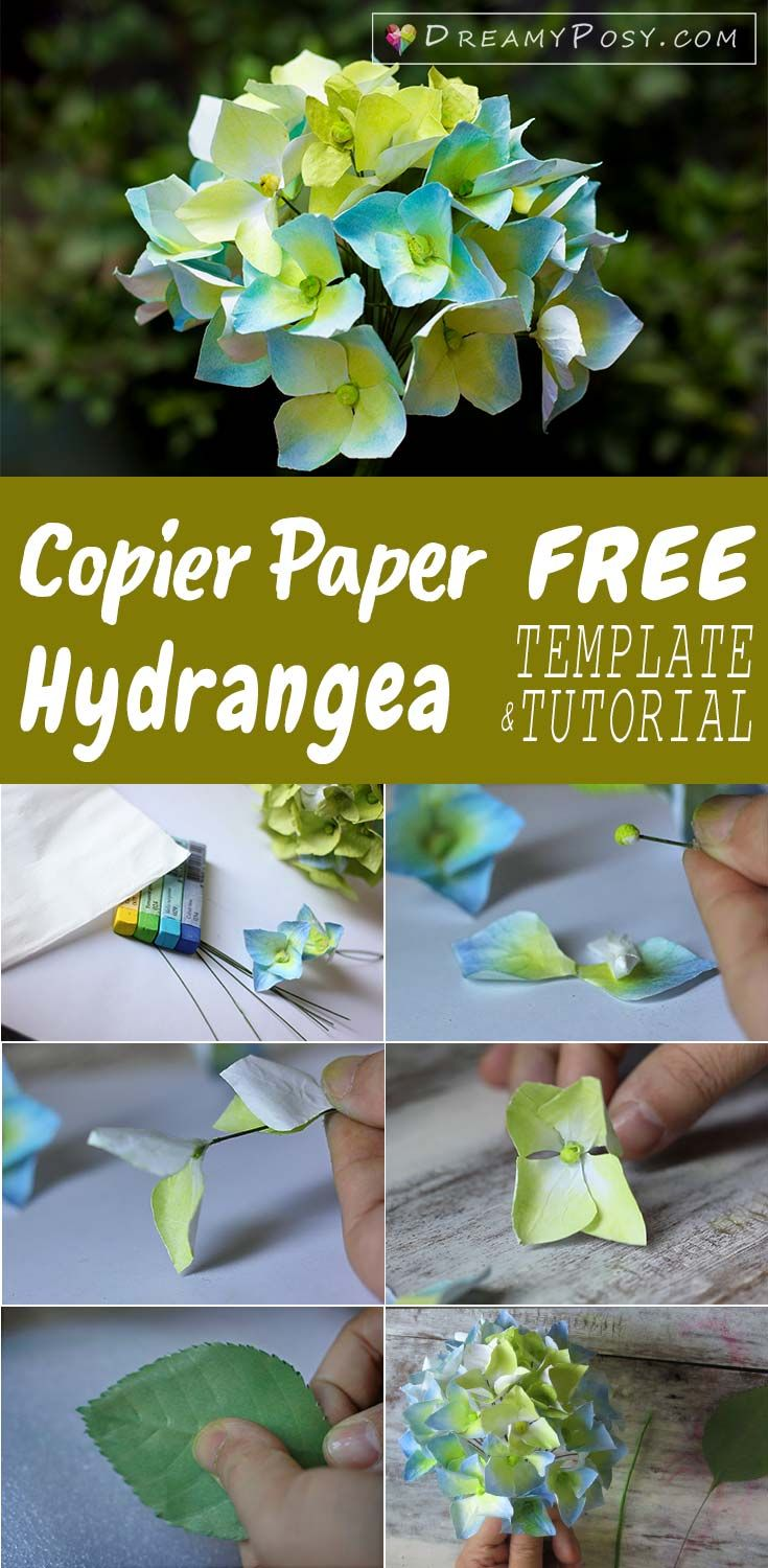 free template and tutorial to make hydrangea paper flower paper flowers flower making free tutorial free template