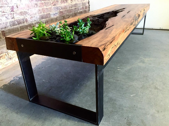Beautiful Live Edge Table With Succulent Planter.