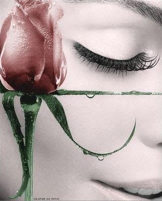 O Mundo Invisível de uma Mulher: AS ROSAS QUE CHORAM...