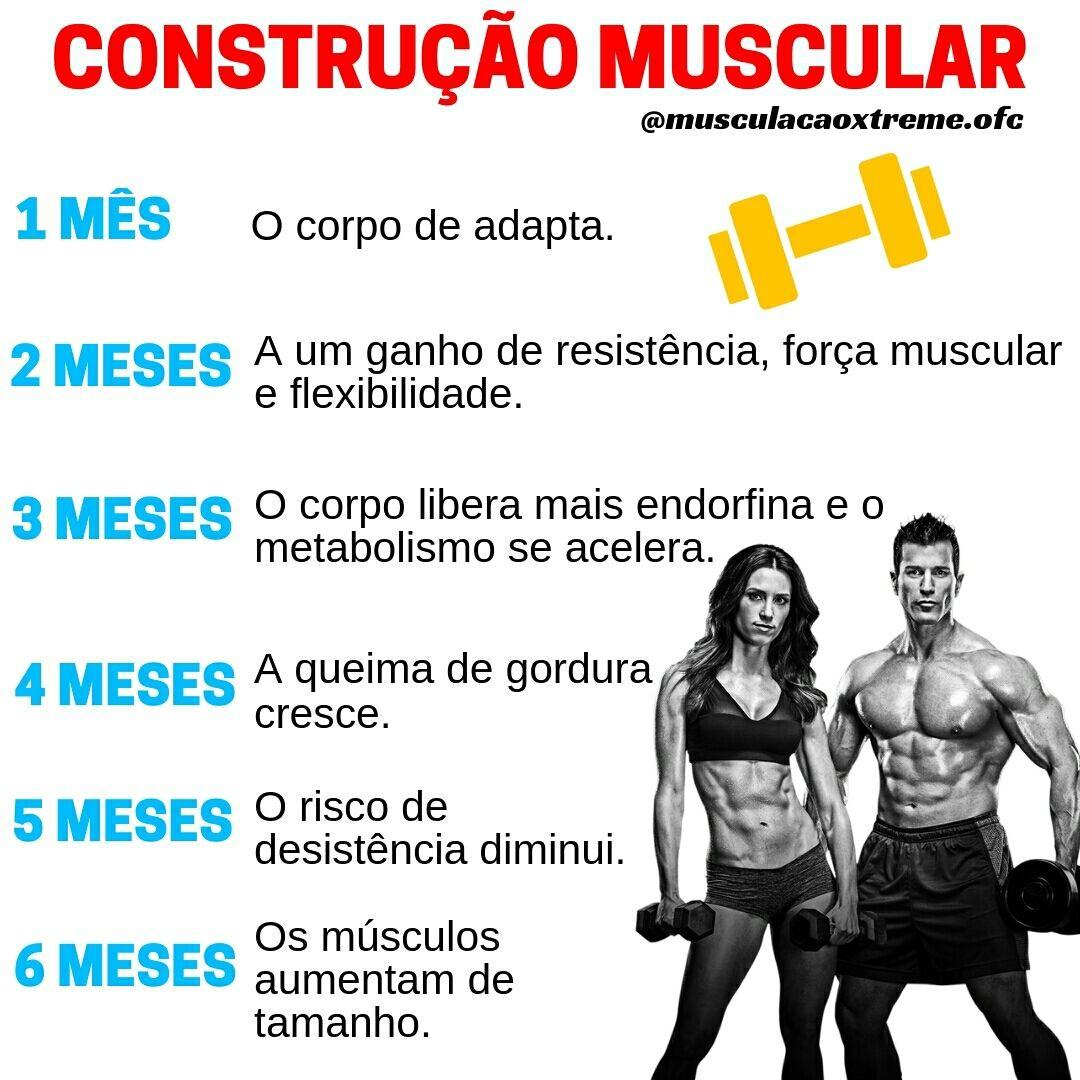 Pin Em Musculacao E Fitness