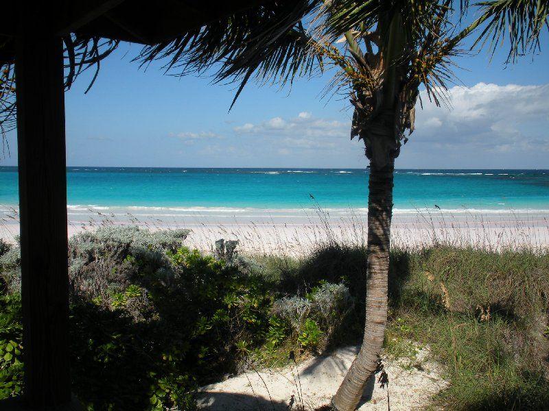 The Beach House Tappas Bar- Eleuthera, Bahamas