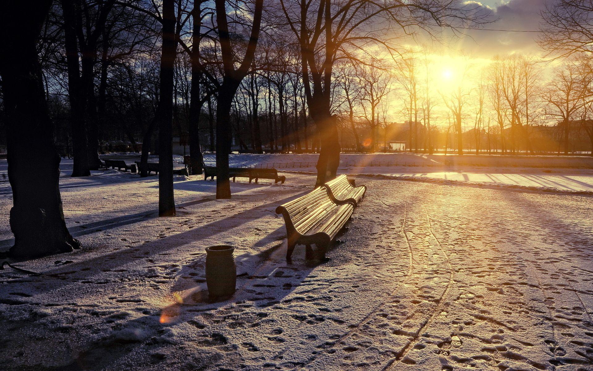 Nature Sky Sun Winter Sunset Tree Snow Hd Wallpaper Winter Sunset Winter Nature Winter Wallpaper