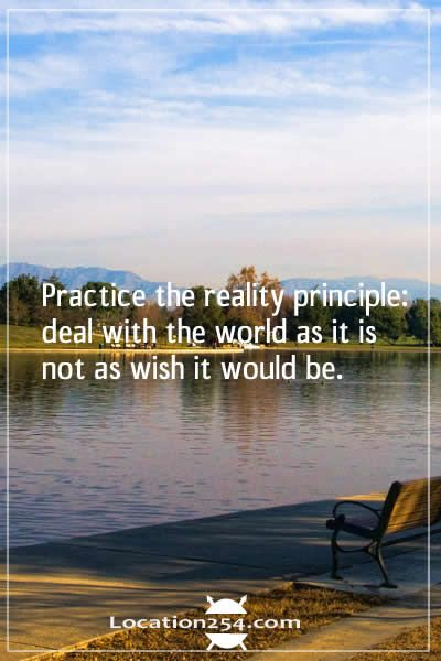 practice  the reality principle deal with the world as it is