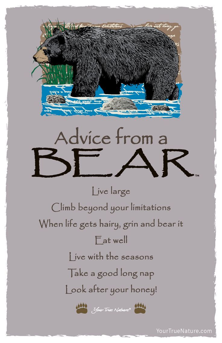 Wedding Advice From A Bear Look After Your Honey Your True