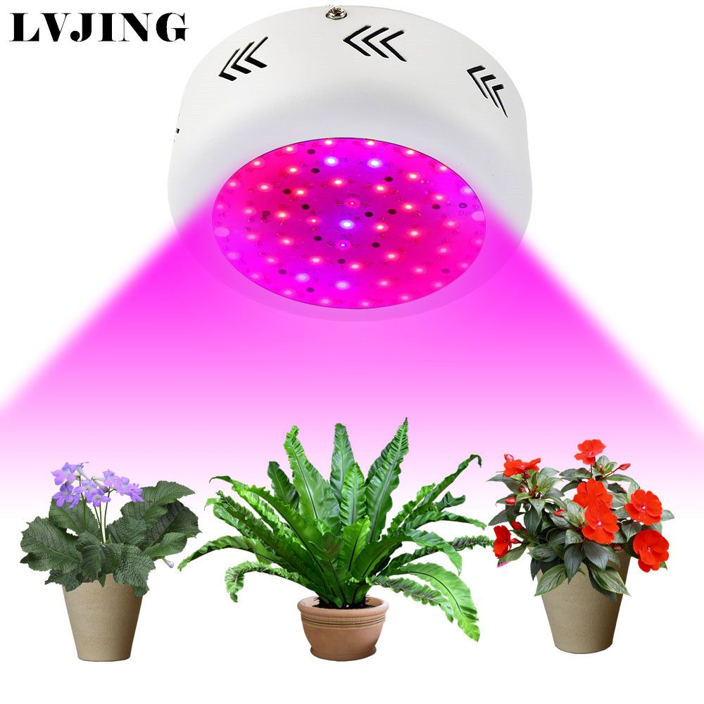 Led Grow Light 150w 216w 300w 1000w Full Spectrum Grow Box 420 730nm For Indoor Greenhouse Plants And Flower Hydroponics System Affiliate Hidroponik