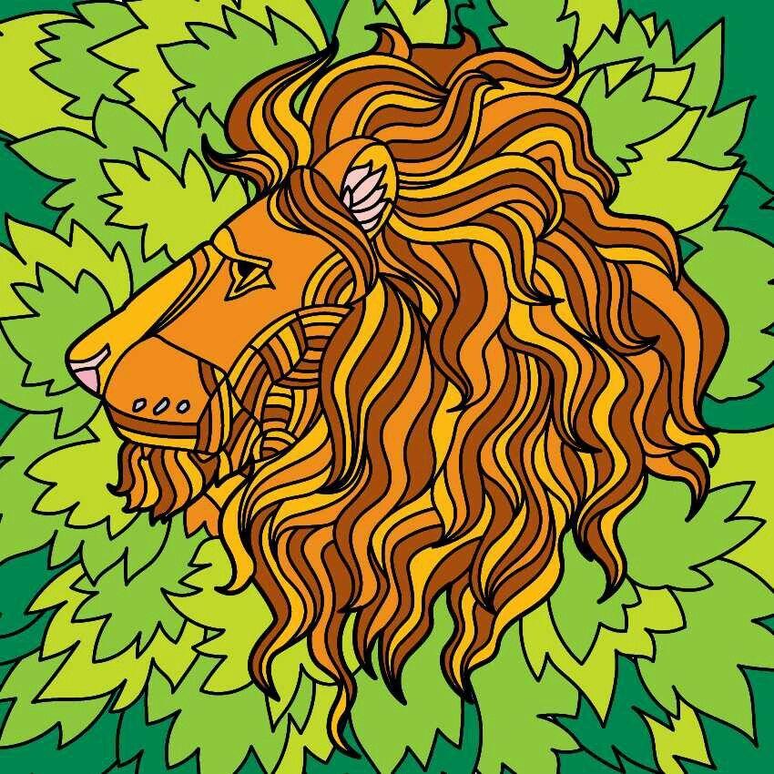 Colorfy Lion