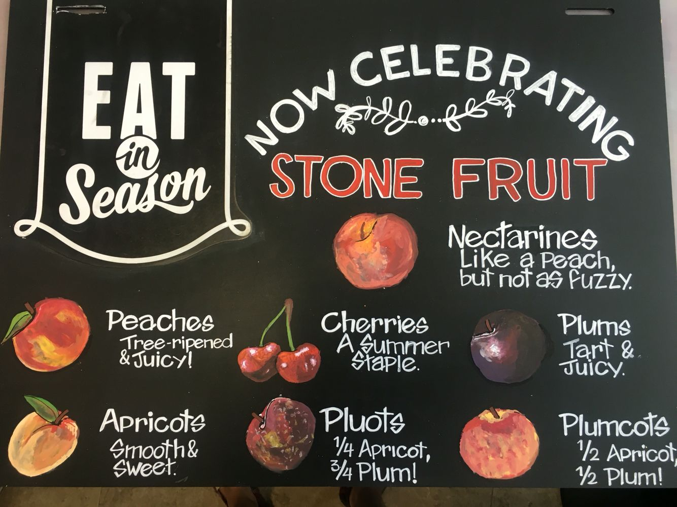 Eat in season whole foods chalkboard for stone fruits. Freehand illustration and calligraphy