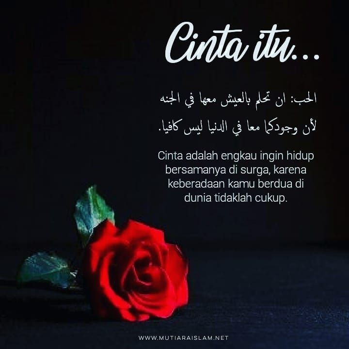 Kata Mutiara Islam Di Instagram Cinta Itu Quotes