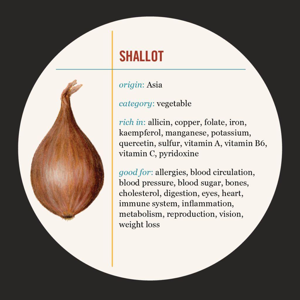 shallot | st food, shallots, quercetin