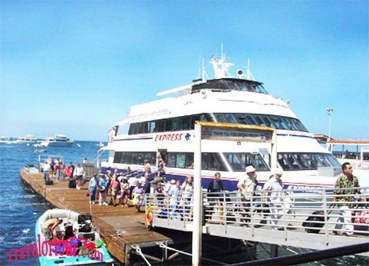 Santa Catalina Cruise Tour United States Pinterest Santa - Catalina cruises