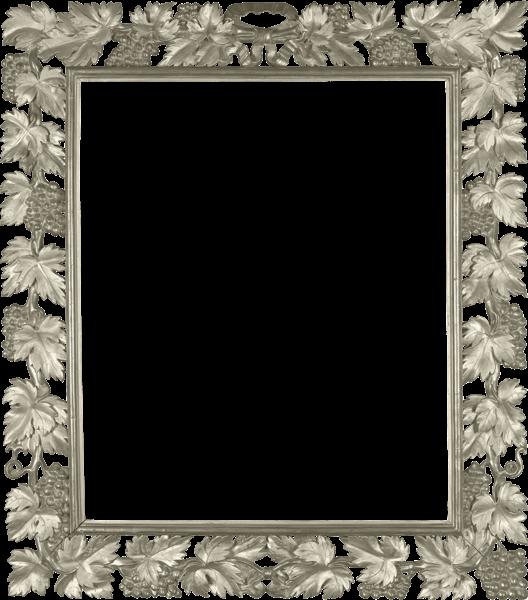 Silver Transparent Png Photo Frame With Vine Frame Photo Frame Gold Picture Frames