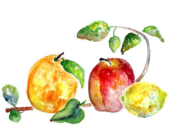 Fruit Watercolor Painting