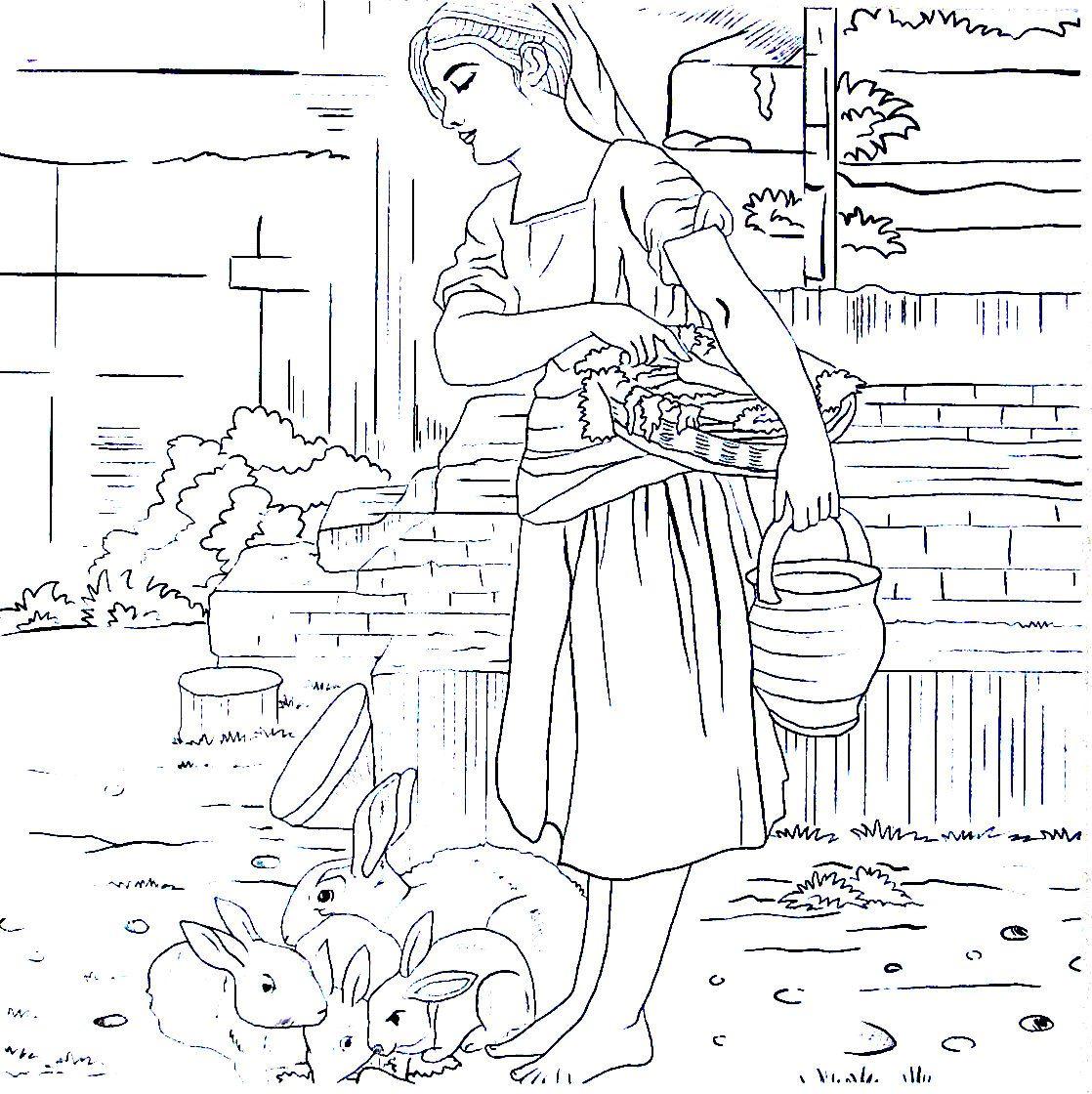 Feeding The Bunny Rabbits Fresh Carrots