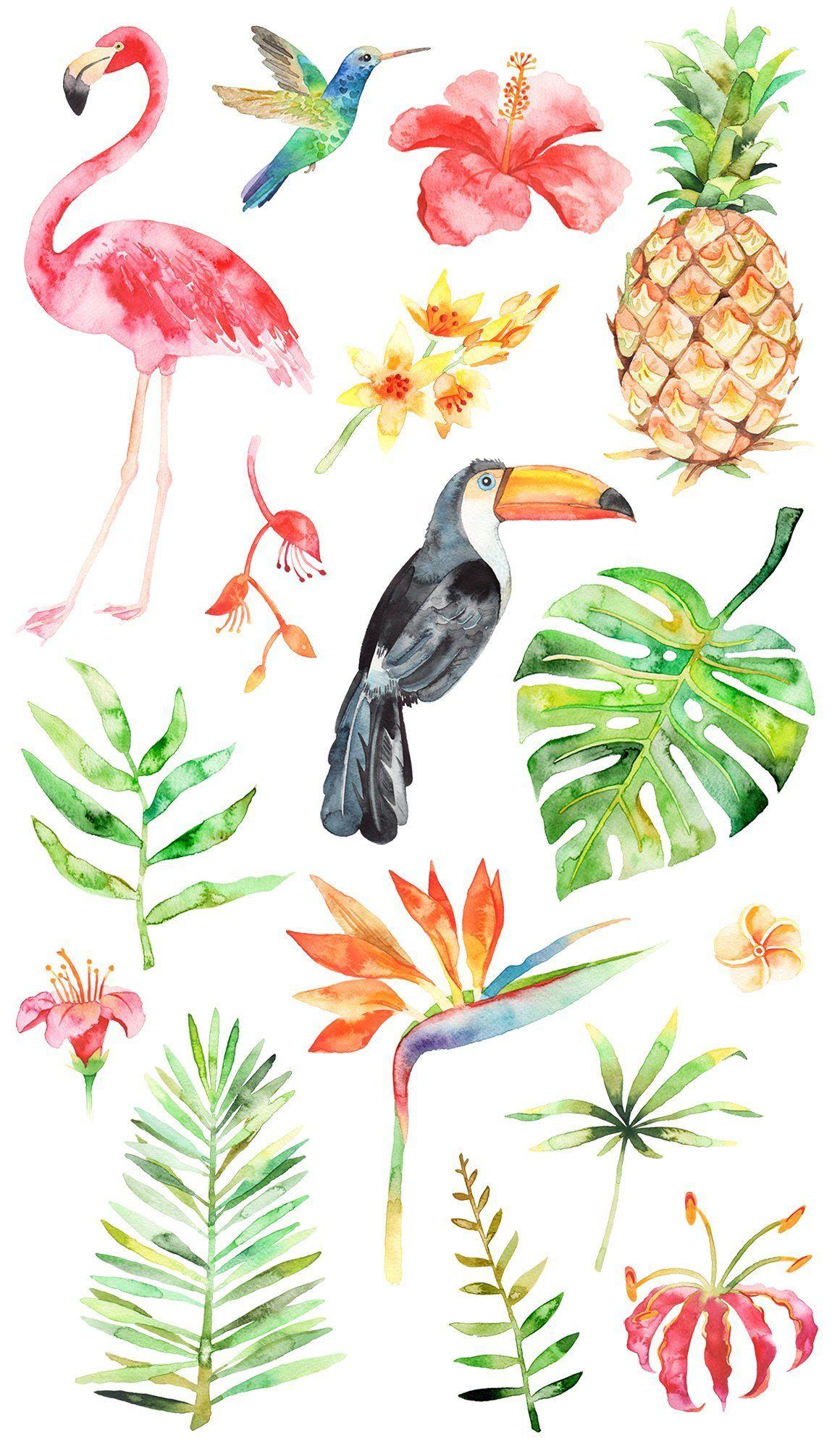 Watercolor tropical set by artn'Lera on @creativemarket