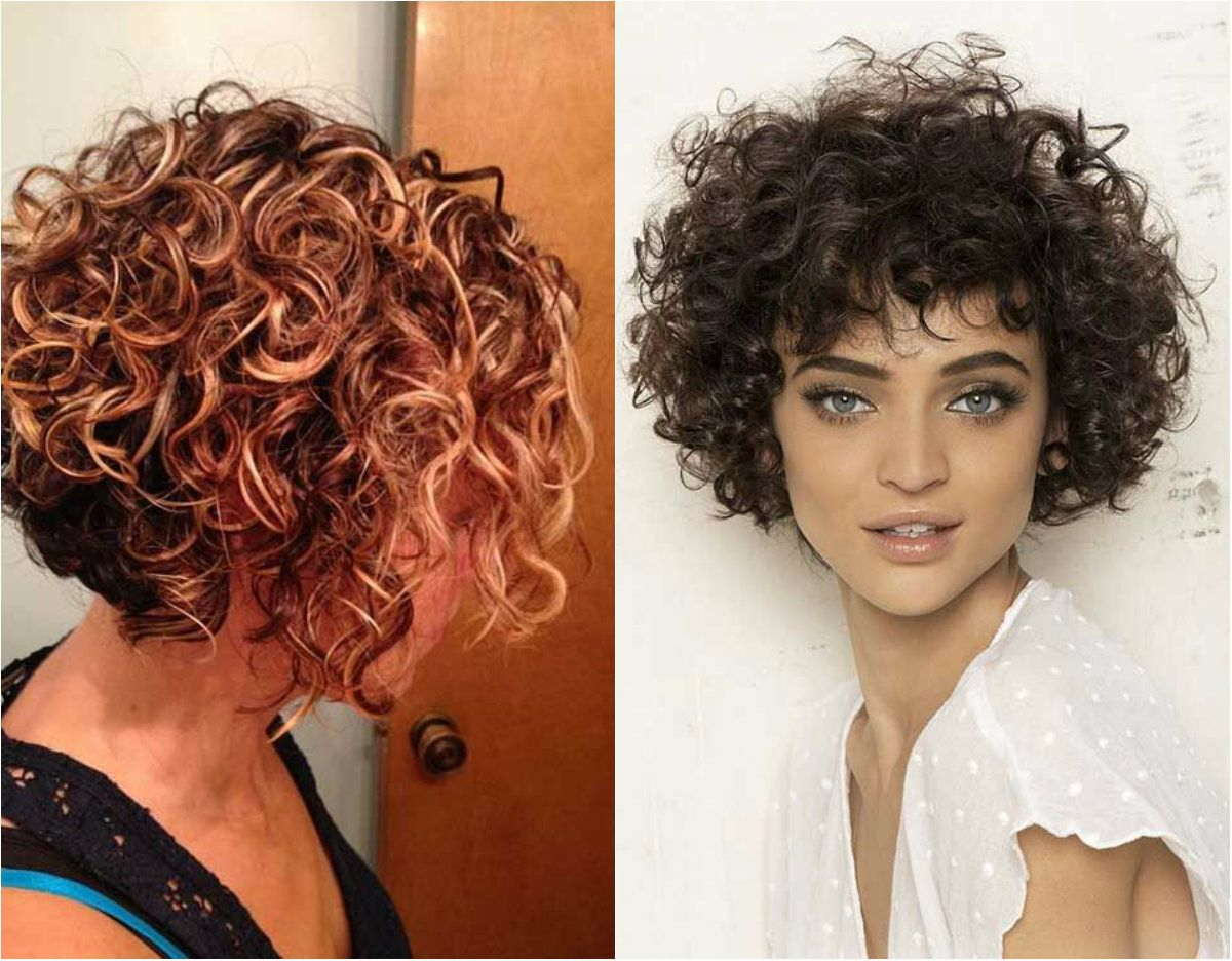 Short Curly Hairstyles 2018 54 In 2019 Bob Haircut Curly