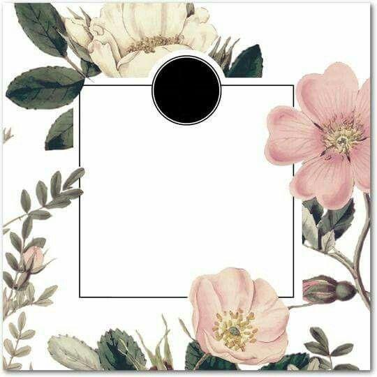 خلفيات Flower Frame Flower Border Wallpaper Backgrounds
