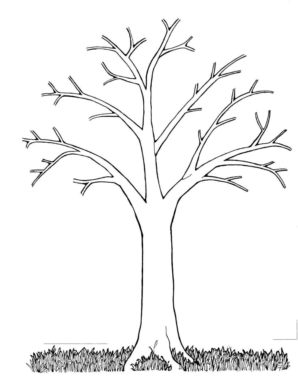 Bare Tree Coloring Pages For Kindergarten Printable Shelter Tree Coloring Page Leaf Coloring Page Picture Tree