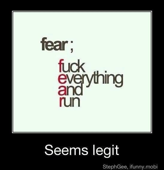 Fear Fuck everything and run!! Fear Pinterest - ba stands for