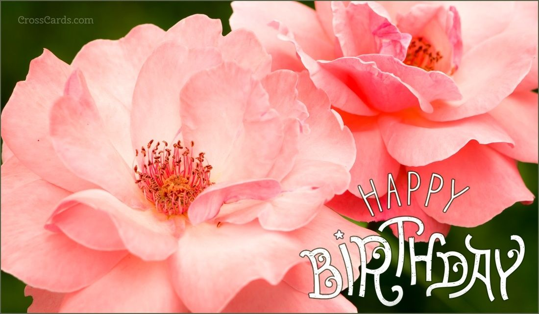 birthday invitation card in hindi%0A Send Birthday ecards and online greeting cards to friends and family   Funny  cute  and Christian inspirational Birthday cards online