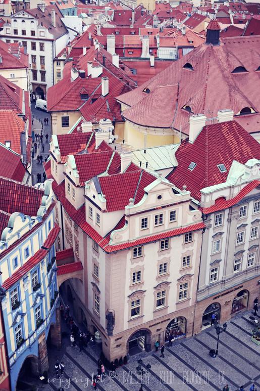 Fräulein Klein : Fliederzeit in Prag