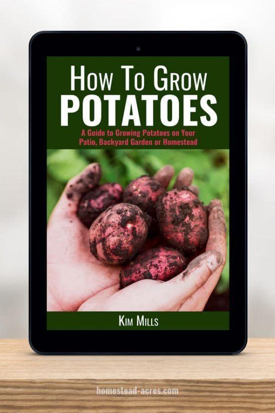 How To Grow Potatoes #growingpotatoes Complete beginners guide to growing potatoes in your backyard garden. #gardening #growingpotatoes