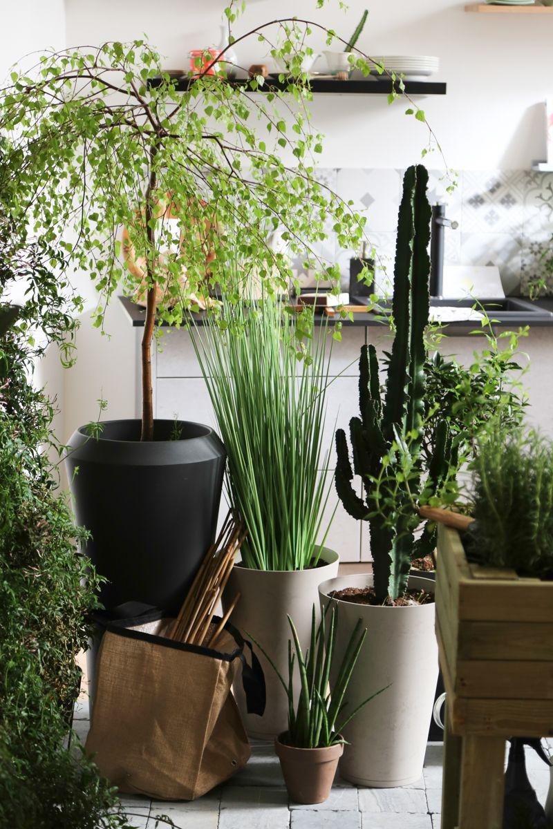 Chez Moy L Appartement Design De Leroy Merlin Flowers Pinterest