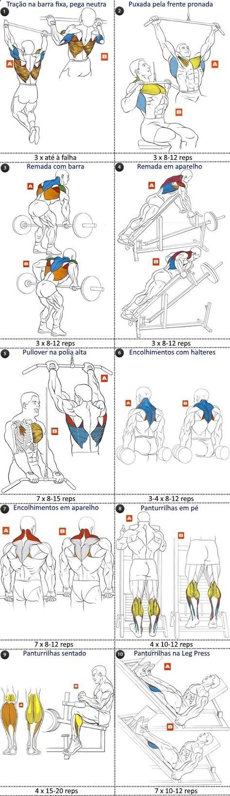 Souvent FST-7 costas e panturrilhas | Fitness and other | Pinterest  XT81
