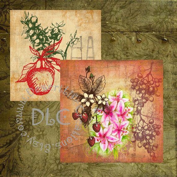 Vintaq Fruit Art  Digital Collage Sheets by DesertLifeCreations, $4.25