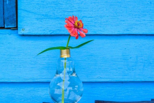 Lampadine fulminate da cambiare? Non sprecatele e riciclatele come oggetti di design e di arredo