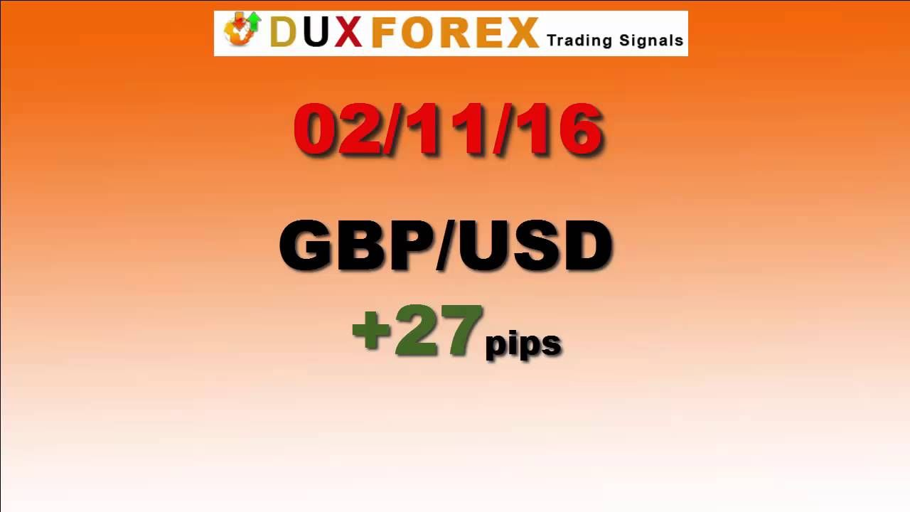 Daily Forex Profits Performance 02/11/16 Forex signals