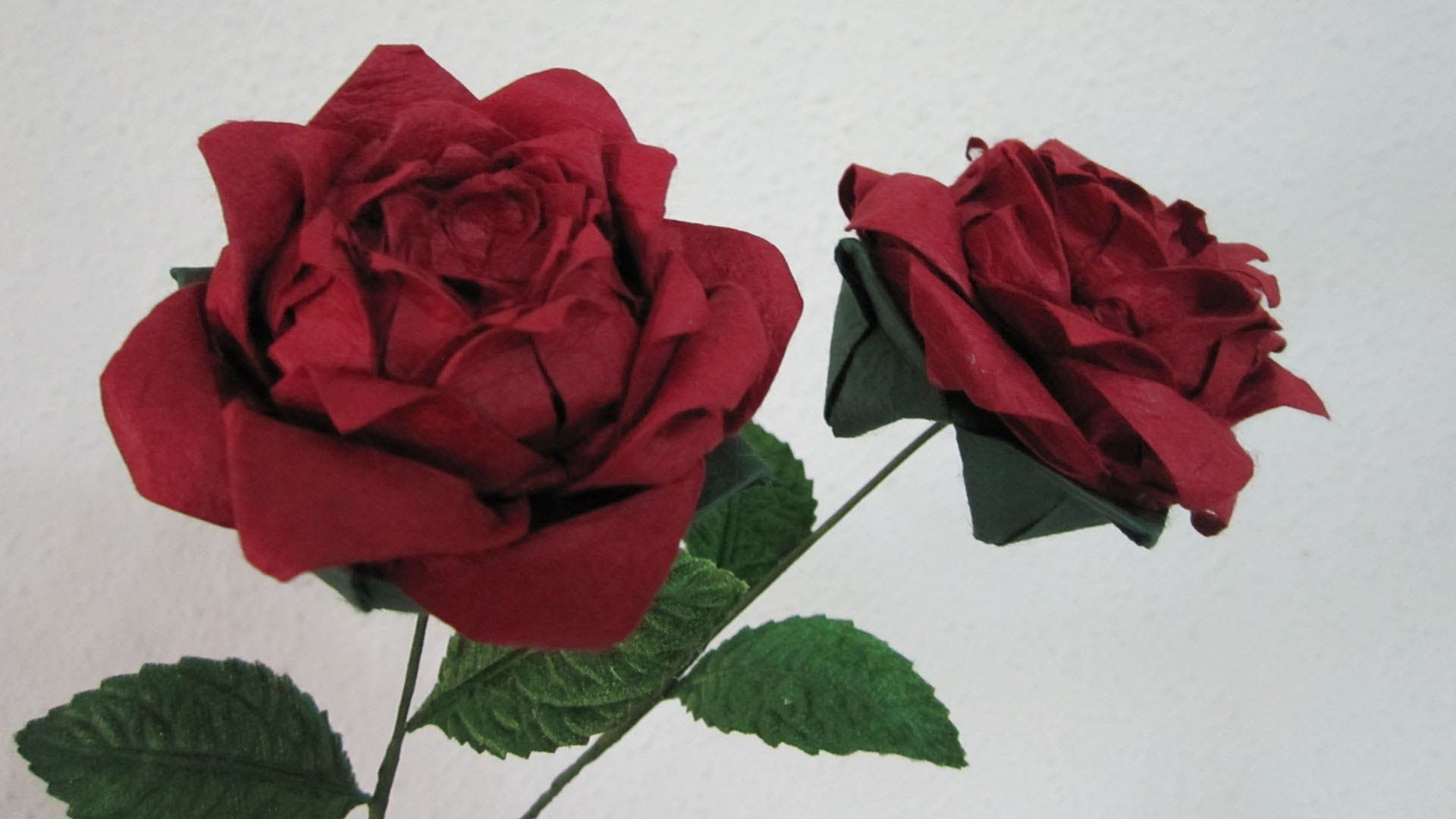 A Beautiful Gift For Your Loved Onese Red Rose Particularly Is