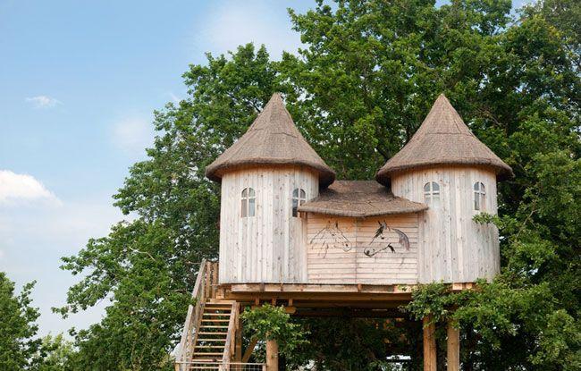 Maison dans les arbres.