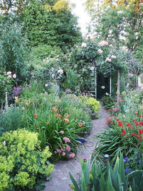 Pergola Überdachung, Englischer Garten, Kleine Gärten, Mein Garten, Haus  Und Garten, Pflanzen, Cottage Garten, Blumen, Englisches Gartendesign
