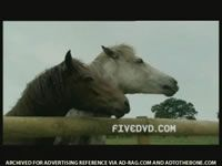 Five/Fivedvd.com - Horses (2005) 0:10 (UK)   adland.tv